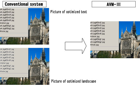 Conventional system - Picture of optimized text, Picture of optimized landscape. AVM3
